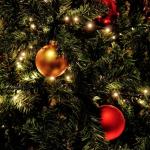 Vánoční osvětlení: za jakou cenu?